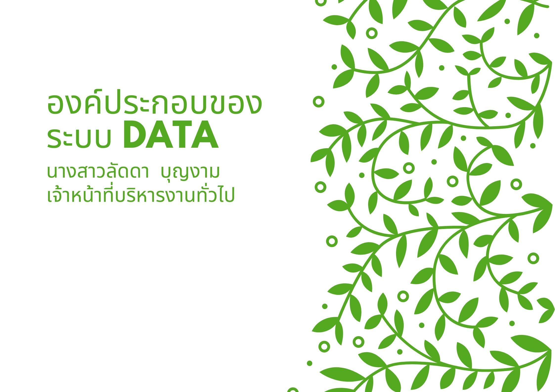 องค์ประกอบของระบบ-DATA